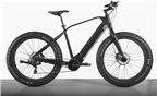 Witt e-bike E-Sumo